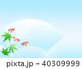 青紅葉 金魚 夏のイラスト 40309999