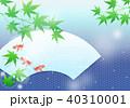青紅葉 金魚 夏のイラスト 40310001