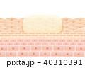 肌断面図スキンケア塗布イメージ 40310391