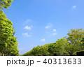 青空 雲 夏の写真 40313633