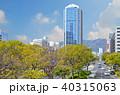 神戸市 フラワーロード 神戸市役所の写真 40315063