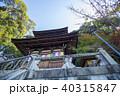永観堂 秋 紅葉の写真 40315847