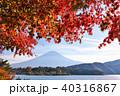 富士山 山 秋の写真 40316867