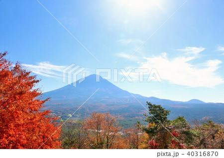 秋晴れの青空と紅葉 そして富士山 40316870