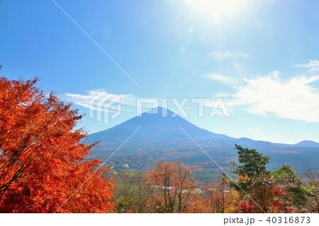 秋晴れの青空と紅葉 そして富士山 40316873