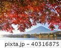 富士山 山 秋の写真 40316875