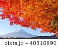 富士山 山 紅葉の写真 40316890