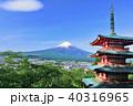 富士山 青空 葉桜の写真 40316965