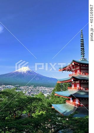 山梨県 五重塔と新緑の葉桜 そして富士山 40316967