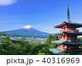 富士山 青空 葉桜の写真 40316969