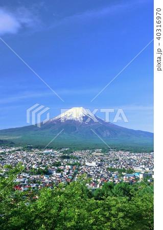 初夏の新緑と街と富士山 40316970