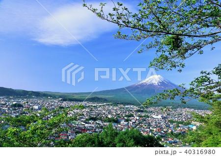初夏の新緑と街 そして富士山 40316980