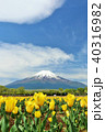 富士山 青空 雲の写真 40316982