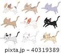 猫 トラ猫 黒猫のイラスト 40319389