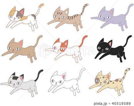 色んな猫.1 40319389