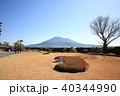 仙巌園から望む桜島 40344990