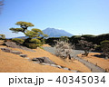 桜島と仙巌園 40345034