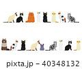 いろいろな猫のボーダーセット 40348132