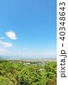 青空 初夏 新緑の写真 40348643