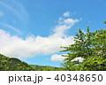 青空 初夏 森の写真 40348650