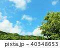 青空 初夏 森の写真 40348653