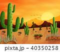 サボテン 砂漠 太陽のイラスト 40350258