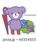 熊 あじさい 紫陽花のイラスト 40354833