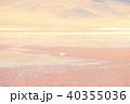 フラミンゴ 塩湖 野鳥の写真 40355036