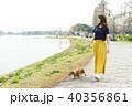 女性 ダックスフント 散歩の写真 40356861