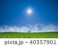 夏 美瑛町 青空の写真 40357901