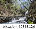 浅間大滝 滝 熊川の写真 40363120
