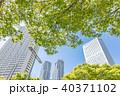ビル 高層ビル 新宿の写真 40371102