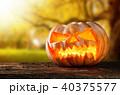 ハロウィン ハロウィーン かぼちゃの写真 40375577