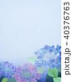 紫陽花 アジサイ 花のイラスト 40376763