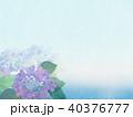 紫陽花 アジサイ 花のイラスト 40376777