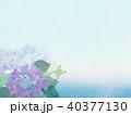 背景-紫陽花-カエル 40377130