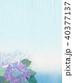 紫陽花 花 植物のイラスト 40377137
