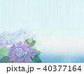 背景-紫陽花-カエル 40377164