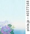 紫陽花 花 梅雨のイラスト 40377168