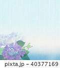 背景-紫陽花-カエル 40377169