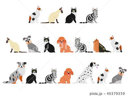 犬と猫のボーダーセット 40379359