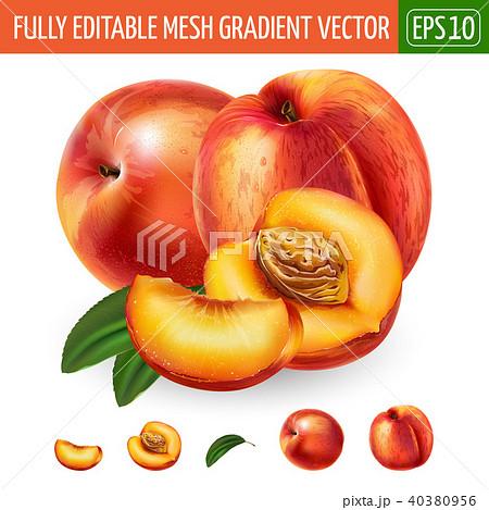 Peach on white background. Vector illustration 40380956