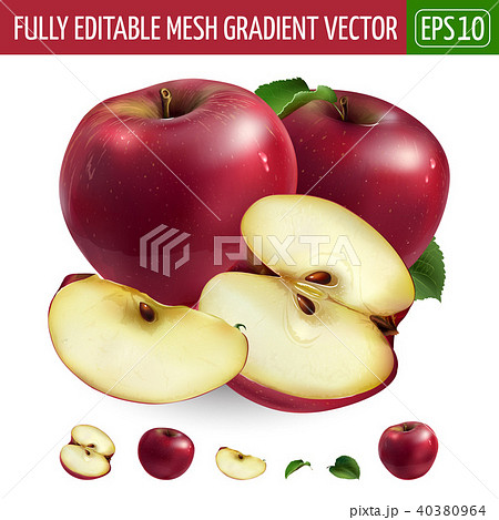 Red apple on white background. Vector illustration 40380964