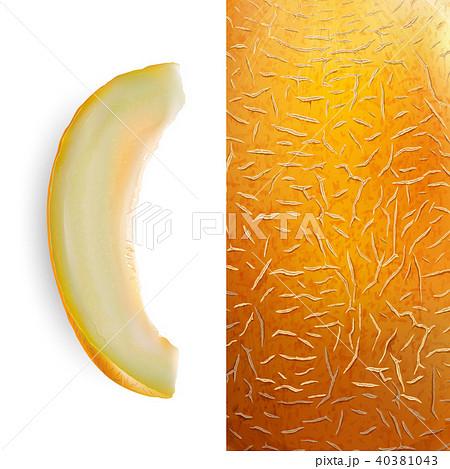 slice of melon vector illustrationのイラスト素材 40381043 pixta