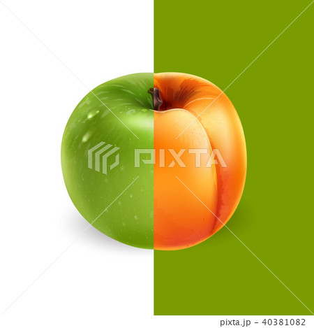 Apricot and green apple. Vector illustration 40381082