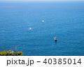 眺望 海 相模湾の写真 40385014
