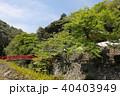 瀧安寺 本山修験宗 寺院の写真 40403949