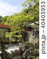 瀧安寺 本山修験宗 寺院の写真 40403953