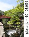 瀧安寺 本山修験宗 寺院の写真 40403954