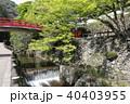 瀧安寺 本山修験宗 寺院の写真 40403955